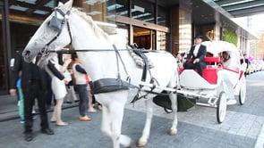馬車婚禮|婚禮錄影|仲倫+欣媛